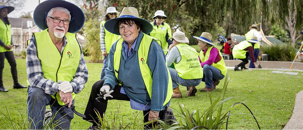 Park Angels - Volunteering